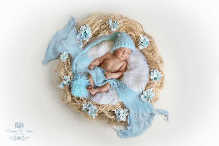 baby boy in a flower nest, Baby photographer DC