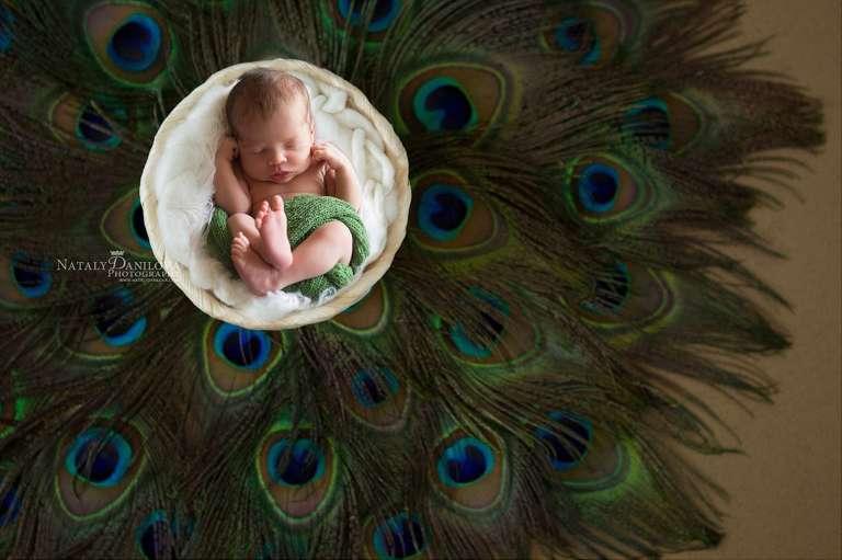 Washington, DC Newborn Photography