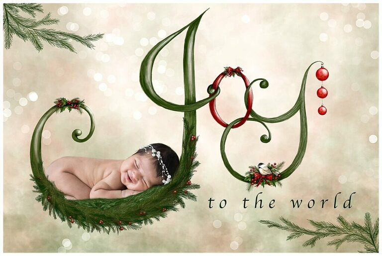 Christmas Baby Session