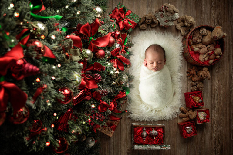 Maternity & Newborn Session